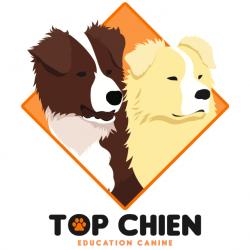Top Chien